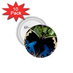 butterfly_4 1.75  Button (10 pack)