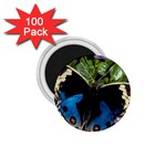 butterfly_4 1.75  Magnet (100 pack)