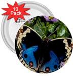 butterfly_4 3  Button (10 pack)