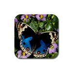 butterfly_4 Rubber Coaster (Square)