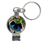 butterfly_4 Nail Clippers Key Chain