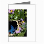 butterfly_4 Greeting Cards (Pkg of 8)