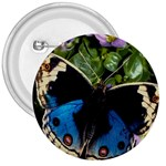 butterfly_4 3  Button
