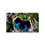 butterfly_4 Sticker Rectangular (10 pack)