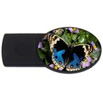 butterfly_4 USB Flash Drive Oval (2 GB)