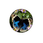 butterfly_4 Hat Clip Ball Marker (4 pack)