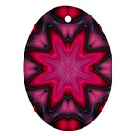 X_Red_Party_Style-777633 Oval Ornament (Two Sides)