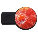 9-700-Fwallpapers_068 USB Flash Drive Round (2 GB)