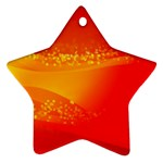 4-703-Fwallpapers_079 Ornament (Star)
