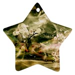 2-1252-Igaer-1600x1200 Ornament (Star)