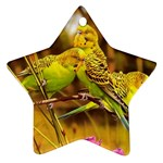 2-95-Animals-Wildlife-1024-028 Star Ornament (Two Sides)