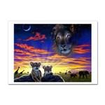 2-77-Animals-Wildlife-1024-010 Sticker A4 (10 pack)