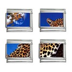 2-74-Animals-Wildlife-1024-007 9mm Italian Charm (4 pack)