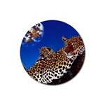 2-74-Animals-Wildlife-1024-007 Rubber Round Coaster (4 pack)
