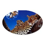 2-74-Animals-Wildlife-1024-007 Magnet (Oval)