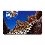 2-74-Animals-Wildlife-1024-007 Magnet (Rectangular)