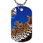 2-74-Animals-Wildlife-1024-007 Dog Tag (One Side)