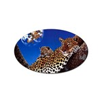 2-74-Animals-Wildlife-1024-007 Sticker Oval (10 pack)