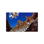 2-74-Animals-Wildlife-1024-007 Sticker Rectangular (10 pack)