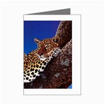 2-74-Animals-Wildlife-1024-007 Mini Greeting Card