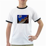2-74-Animals-Wildlife-1024-007 Ringer T