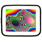 rainbow_xct1-506376 Netbook Case (Large)