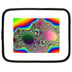 rainbow_xct1-506376 Netbook Case (XXL)
