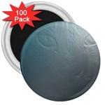 asja 3  Magnet (100 pack)