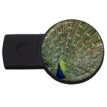 bird_15 USB Flash Drive Round (2 GB)
