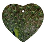 bird_15 Heart Ornament (Two Sides)