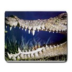 Croc Large Mousepad
