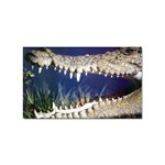 Croc Sticker Rectangular (10 pack)