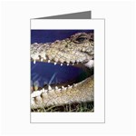 Croc Mini Greeting Card