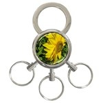 flowers_30 3-Ring Key Chain