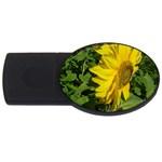 flowers_30 USB Flash Drive Oval (1 GB)