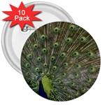 bird_15 3  Button (10 pack)