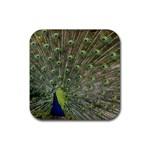 bird_15 Rubber Coaster (Square)