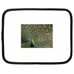 bird_15 Netbook Case (XL)