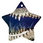 Croc Ornament (Star)