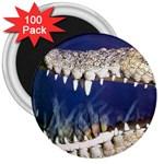 Croc 3  Magnet (100 pack)