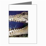 Croc Greeting Cards (Pkg of 8)