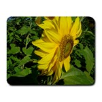 flowers_30 Small Mousepad