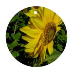 flowers_30 Ornament (Round)
