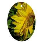 flowers_30 Ornament (Oval)