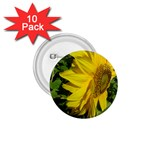 flowers_30 1.75  Button (10 pack)