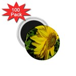 flowers_30 1.75  Magnet (100 pack)