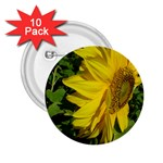 flowers_30 2.25  Button (10 pack)