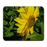 flowers_30 Large Mousepad