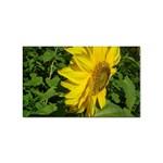flowers_30 Sticker (Rectangular)
