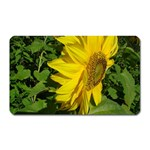 flowers_30 Magnet (Rectangular)